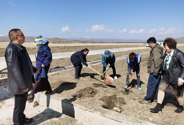 金牧粮草落户红原国家级牧草种子生产基地
