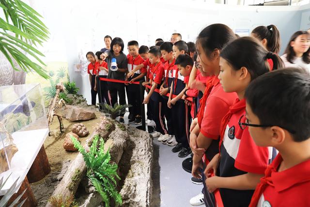 """""""探索自然、发现生命 """"400件古生物化石亮相成都市植物园科普馆"""